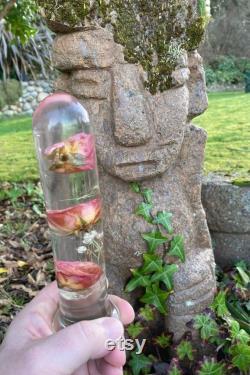 Beau jouet rose de sexe avec de vraies roses, grand gode transparent avec de vraies roses roses, conception adulte xxx de rose de jouet,