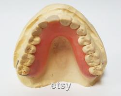 NAGEOIRE DE DENTS MANQUANTES Plaque de séjour Nouveau personnalisé Kit d impression inclus Prothèse acrylique inférieure supérieure Manquant de remplacement dentaire de dent